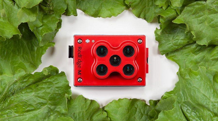 Video Matrice 210 para agricultura con cámara RGB Zenmuse X5S multiespectral RedEdge-M y Pix4DAg
