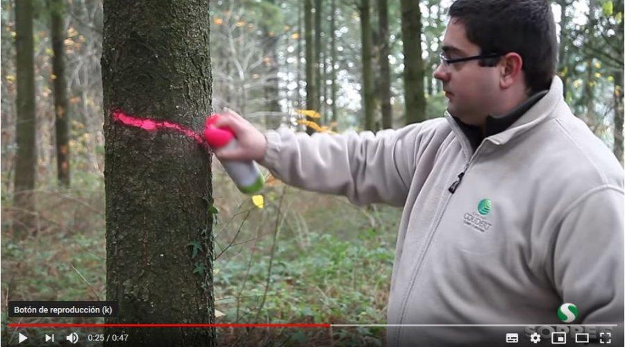 Video Spray de pintura forestal de larga duración STRONG MARKER SOPPEC